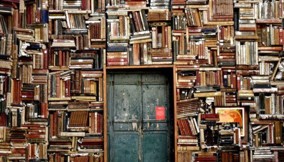 Litteraturhistorie: blandingen af det fascinerende og obskure